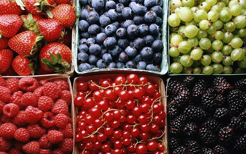 Storing methods of berries